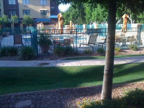 Courtyard Tempe Downtown: View of Pool from room