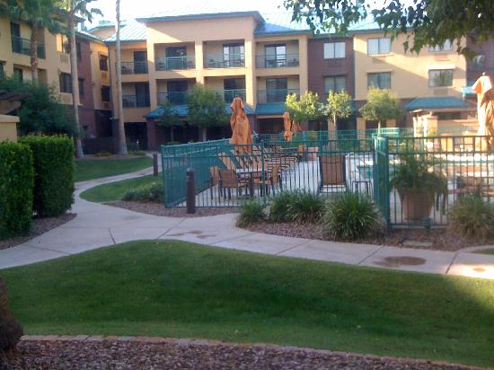 Courtyard Tempe Downtown: View from room