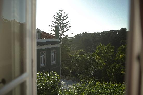Monte Da Lua: Looking out the window