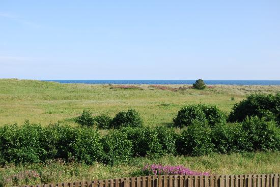 St Cyrus, UK: View from the rooms