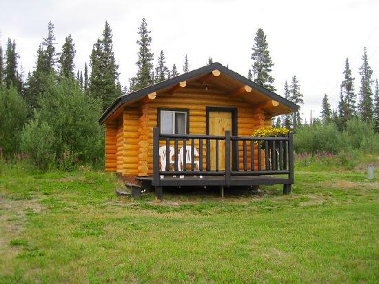 Golden Spruce Cabins: our cabin