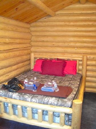Golden Spruce Cabins張圖片