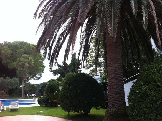 Sant Pere Pescador, Spanien: piscina-jardin a 50 metros carretera