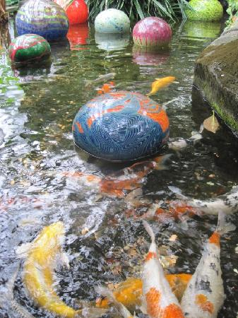 Franklin Park Conservatory and Botanical Gardens: Koi pond and art