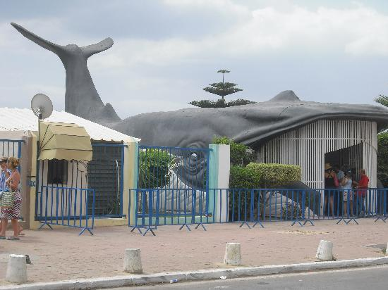 Hotel Club President: Entrée Parc Aquatic en face de l'hôtel