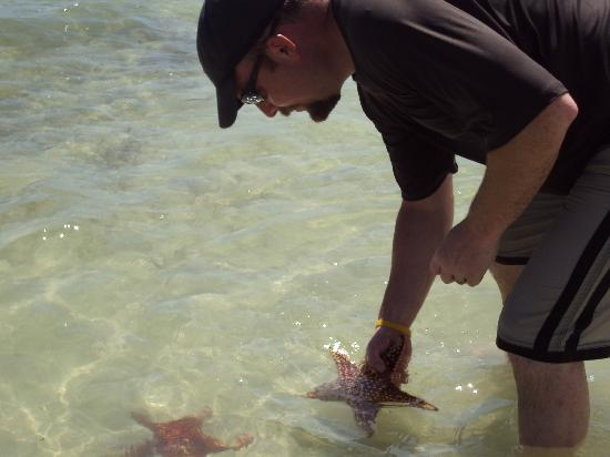 Star Fish Point: Matt