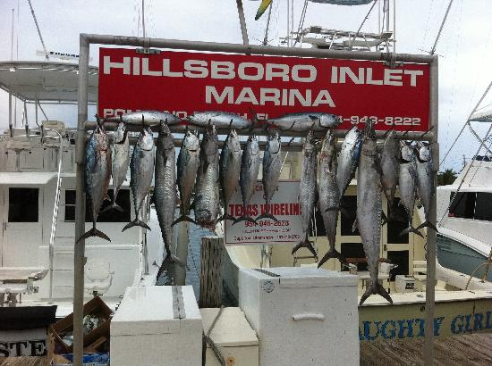 Killin' Time Charters: August 8th trip