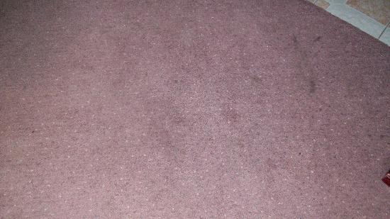 Auberge Champetre: une partie du tapis