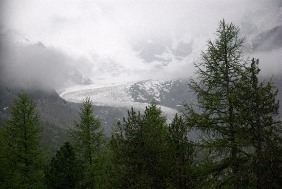 Glacier Express : Bernina Express view