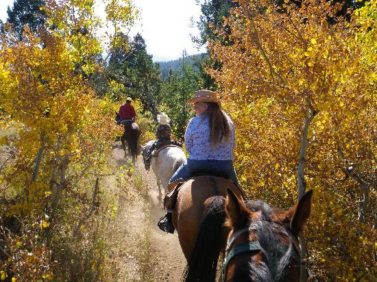 Bagley's Teton Mountain Ranch: Fall of 2010