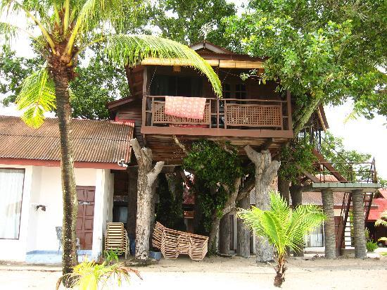 Malibest Resort : Treetop
