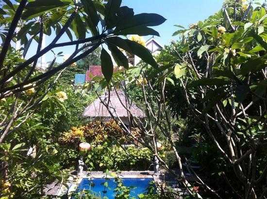โรงแรมทรอปิคัล บาหลี: vue depuis la terrasse...
