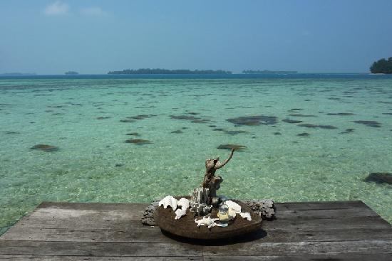 Pulau Macan Tiger Islands Village & Eco Resort: View from the bungalow