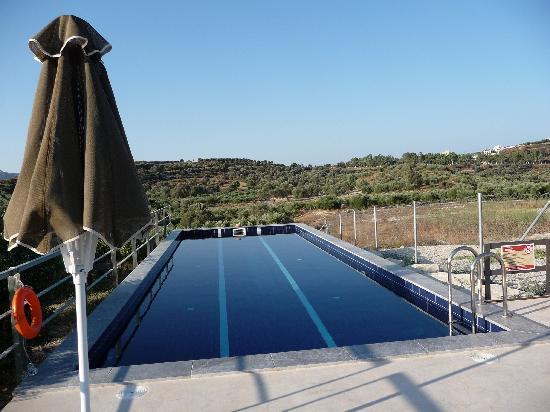 Niriida Guest House: Pas mal au milieu des oliviers !