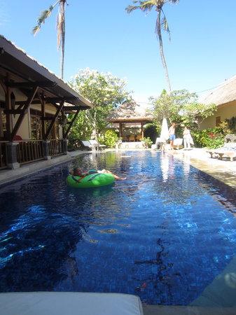 Bali Berg Villa : Zwembad Baliberg Villa