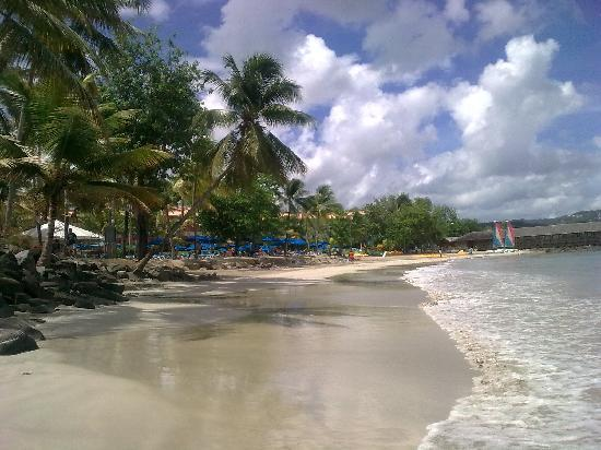 Almond Morgan Bay Beach Resort St Lucia Tripadvisor