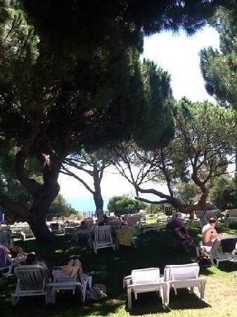 Club Med Da Balaia: jardins club vue mer