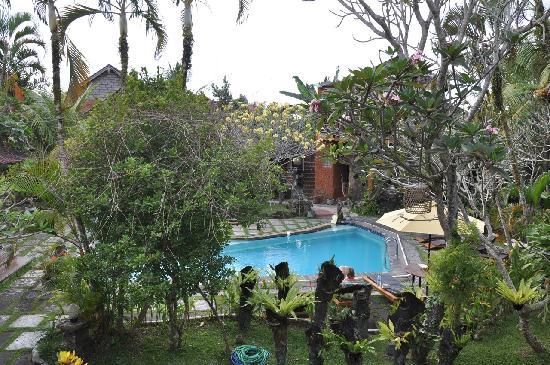 أوكاواتي هوتل: View of pool from room