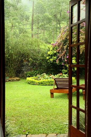 Ceylon Tea Trails: private garden