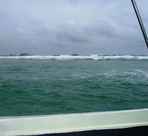 Hikkaduwa, Sri Lanka: The choppy sea!