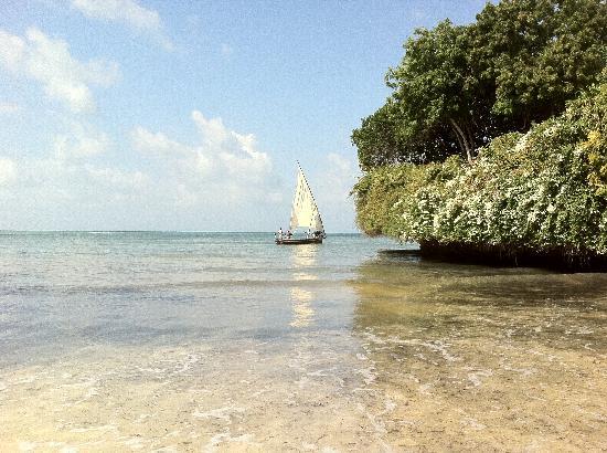 Dorado Cottage: La Spiaggia