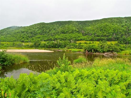 Margaree Riverview Inn: Aussicht vom Fluß