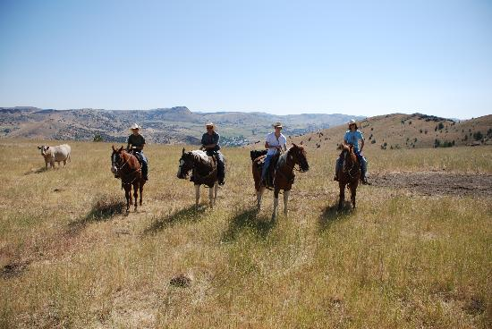 Wilson Ranches Retreat Bed & Breakfast: Our horseback ride
