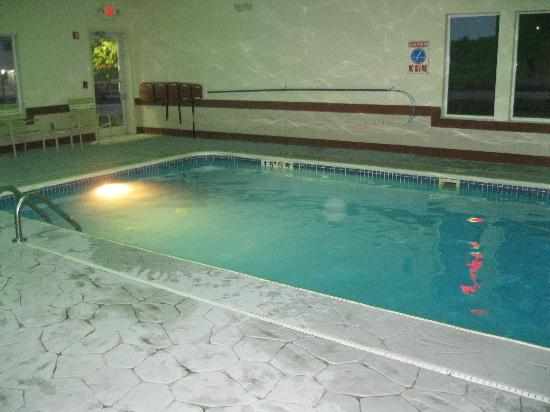Best Western Wapakoneta Inn: Nice indoor pool to play in
