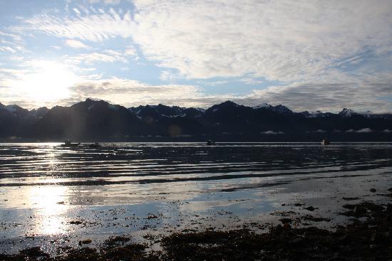 Miller's Landing: View across the bay