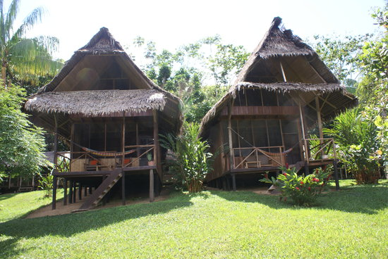 Loreto Region, Peru: Pacaya Samiria Amazon Lodge
