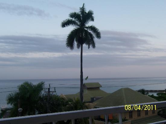 Caribic House: Montego Bay Palm Tree
