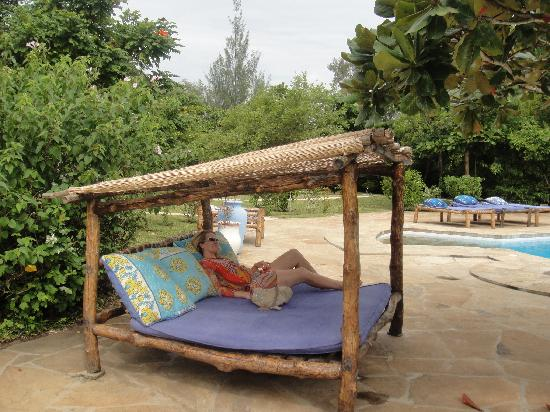 Kinondo Kwetu: One of the sun loungers - very comfortable and plenty around the place