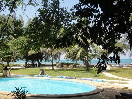 Kinondo Kwetu: the little pool near the cottages