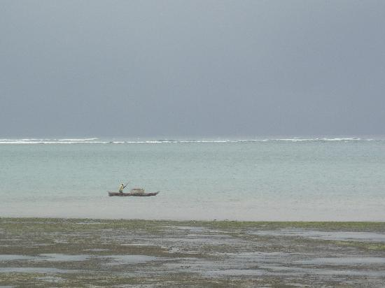 Kinondo Kwetu: view of the beach at low tide..