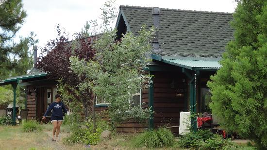 Yosemite Hilltop Cabins: Hilltop Cabins