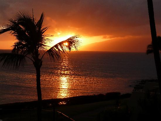 Napili Point Resort: Love the sunsets.