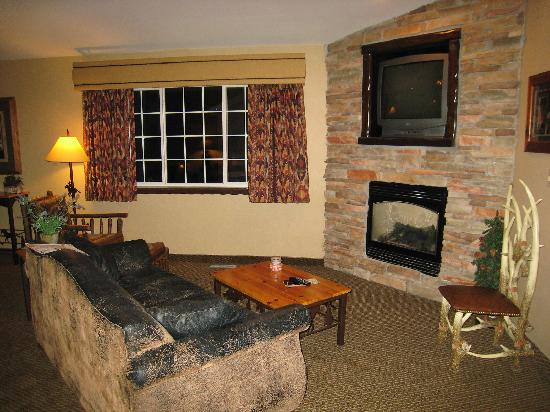 Stoney Creek Hotel & Conference Center  - Columbia: Leather Sofa Sleeper Chairs, TV, Fireplace