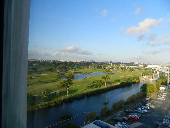 Sheraton Miami Airport Hotel & Executive Meeting Center : True picture from our room