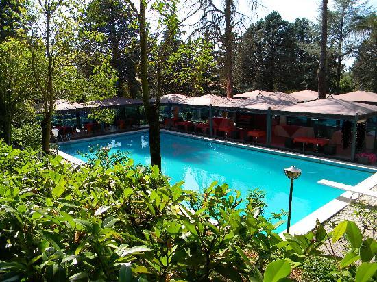 Hotel Torre Dei Calzolari Palace: bellissima la piscina.. peccato inutilizzabile!!
