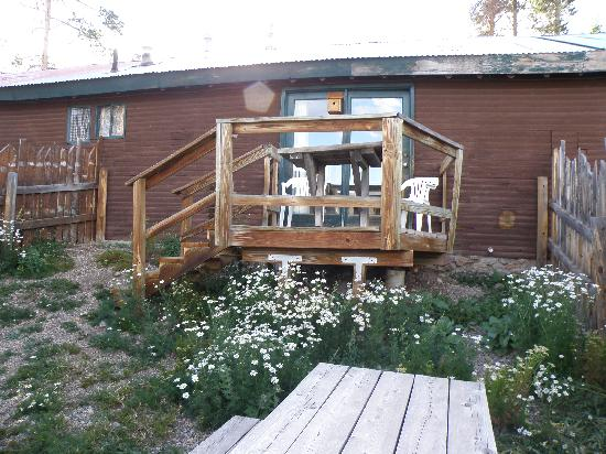 Mountain Lakes Lodge : The back of The Bear Collector Unit showing the private fenced in yard
