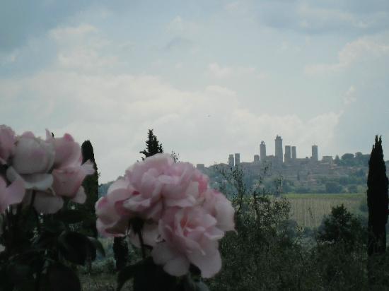 Agriturismo Il Vecchio Maneggio: Nada como tomar um vinho magnífico vendo essa paisagem...