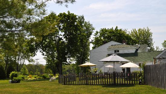 Hounds Tooth Inn: The Canine Cafe....gathering spot for the hounds