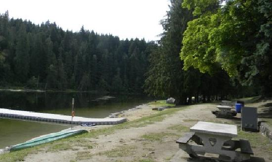 Williamson's Lake Campground: Sandy shore