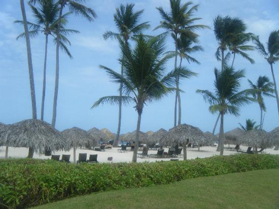 Secrets Royal Beach Punta Cana: Beach View