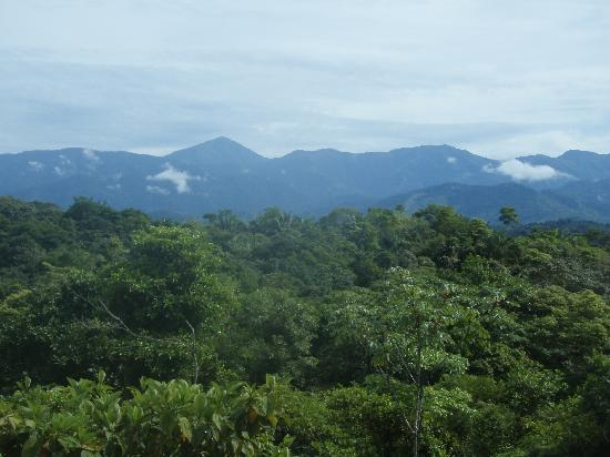 TiTi Canopy Tours: The Mountain View