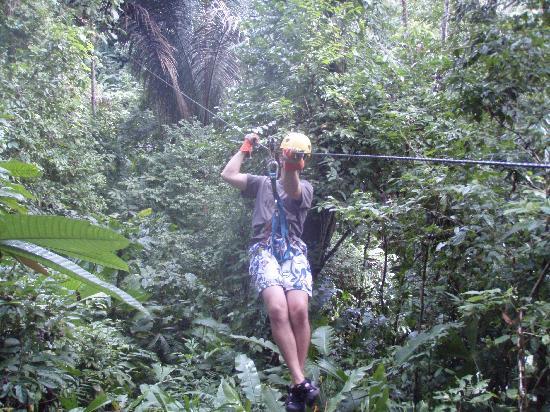 TiTi Canopy Tours: Zip Line