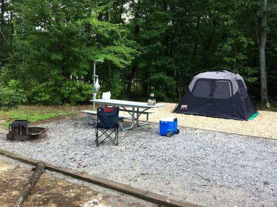 Spotsylvania, Вирджиния: Lake Anna Campground