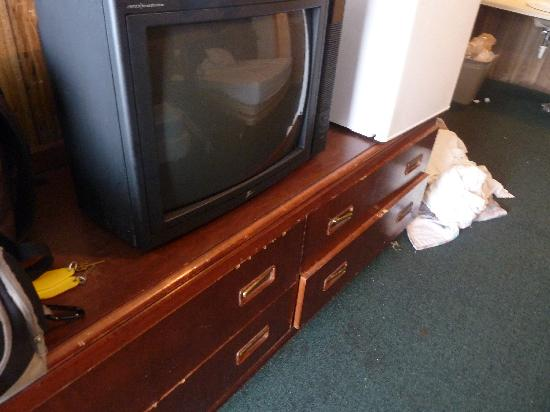 Surfside Motel : tv, no control. terrible condition