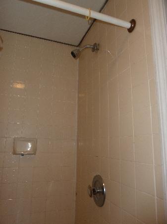 Surfside Motel: Shower, really bad.