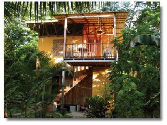 Cabinas Monte Sol: Jungle house